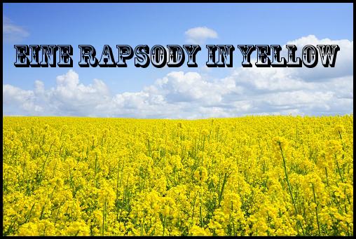 field-of-rapeseeds-474558_640.jpg