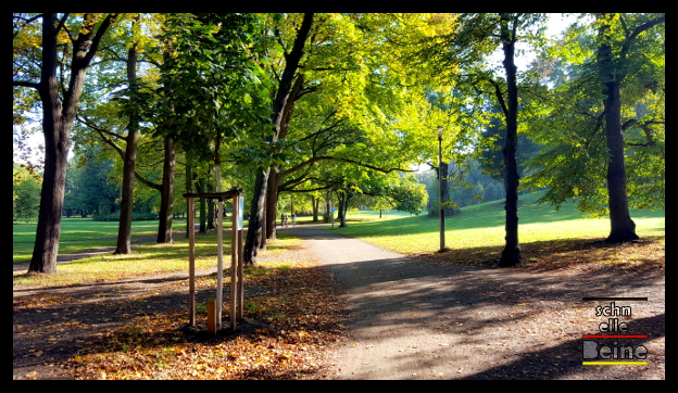 clara_park_schnelle_beine_3