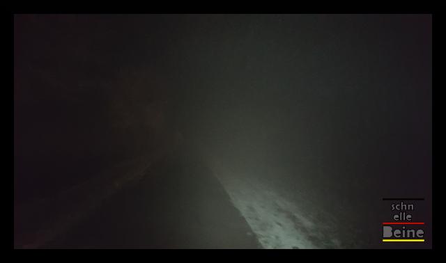 nebel_3_schnelle_beine